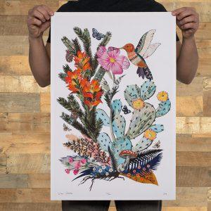 DG - Hummingbird (Cactus)